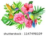 greeting card with hummingbirds ... | Shutterstock . vector #1147498109