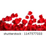 Stock photo red rose petals on white background top view 1147577333