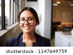 young mixed race businesswoman... | Shutterstock . vector #1147649759