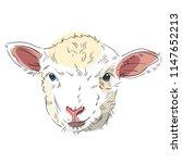 vector illustration of lamb... | Shutterstock .eps vector #1147652213
