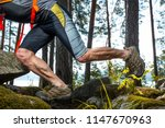 muscled legs of the trail... | Shutterstock . vector #1147670963