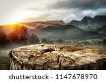 wooden space for your... | Shutterstock . vector #1147678970