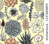 vector succulents seamless... | Shutterstock .eps vector #1147683893