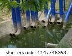 old blue drain water tubes and...   Shutterstock . vector #1147748363