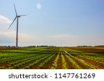 wind turbine with salad... | Shutterstock . vector #1147761269