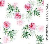peonies watercolor illustration ... | Shutterstock . vector #1147787669