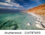 view of dead sea coastline | Shutterstock . vector #114787693