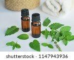 peppermint essential oil for... | Shutterstock . vector #1147943936