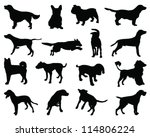 Stock vector silhouettes dog breeds vector 114806224