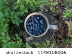 blueberries in cup in forest.... | Shutterstock . vector #1148108006