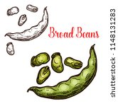 bread bean vector sketch plant. ... | Shutterstock .eps vector #1148131283