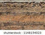 close up background image  cut... | Shutterstock . vector #1148154023