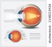 human eye vision anatomy vector ... | Shutterstock .eps vector #1148213426
