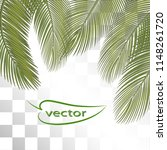 vector illustration of palm... | Shutterstock .eps vector #1148261720