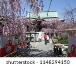 itabashi  tokyo   japan   april ...   Shutterstock . vector #1148294150