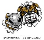 a bulldog angry animal sports...   Shutterstock .eps vector #1148422280