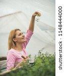 happy florist. happy florist... | Shutterstock . vector #1148444000
