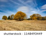 park autumn landscape with... | Shutterstock . vector #1148493449