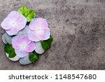 close up view of zen stones... | Shutterstock . vector #1148547680