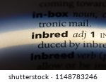Small photo of inbred word in a dictionary. inbred concept.