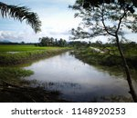 water drainage for paddy fields ... | Shutterstock . vector #1148920253