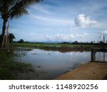 water drainage for paddy fields ... | Shutterstock . vector #1148920256