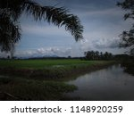 water drainage for paddy fields ... | Shutterstock . vector #1148920259
