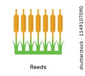 reeds icon vector isolated on...   Shutterstock .eps vector #1149107090