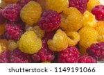 yellow and red organic... | Shutterstock . vector #1149191066