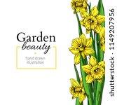 daffodil flower and leaves... | Shutterstock .eps vector #1149207956