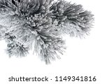 snow covered pine branch on... | Shutterstock . vector #1149341816