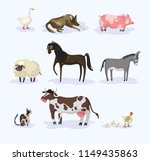 livestock. a collection of... | Shutterstock .eps vector #1149435863