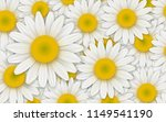 background with white daisy... | Shutterstock .eps vector #1149541190