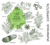 collection of herbs and spice.... | Shutterstock .eps vector #1149567176