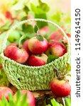 fresh ripe red apples in basket ... | Shutterstock . vector #1149614150
