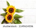 beautiful yellow sunflowers... | Shutterstock . vector #1149614336