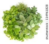 variety fresh herbs isolated on ... | Shutterstock . vector #114961828