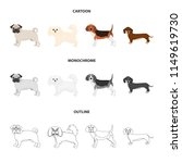 dog breeds cartoon outline... | Shutterstock .eps vector #1149619730