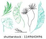 tropical leaves set. hand drawn ...