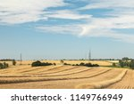 An image of an early harvest  due to the long hot summer in the UK, shot near to Tilton On The Hill, Leicestershire, England, UK