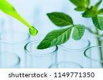 pipette over test tube dropping ... | Shutterstock . vector #1149771350
