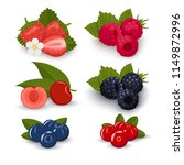 set of berries icons on a white ... | Shutterstock .eps vector #1149872996