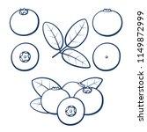 bilberry. outline berries of... | Shutterstock .eps vector #1149872999