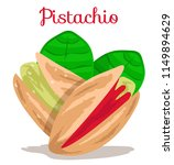 pistachio nuts with leaves.... | Shutterstock .eps vector #1149894629