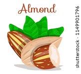 almond nut whole cut half.... | Shutterstock .eps vector #1149901796