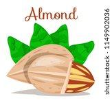 almond nut whole cut half.... | Shutterstock .eps vector #1149902036