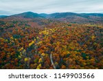 view of a road and autumn color ... | Shutterstock . vector #1149903566