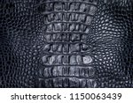 Background Texture Blue Reptile ...