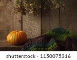 pumpkin  dry flowers and woolen ... | Shutterstock . vector #1150075316