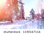 winter forest on a sunny day....   Shutterstock . vector #1150167116